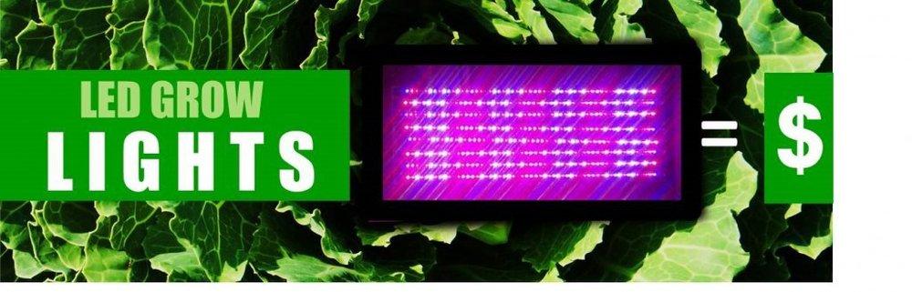 LED Grow Lights Reshape Agriculture